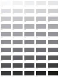 Grey Paint Selection
