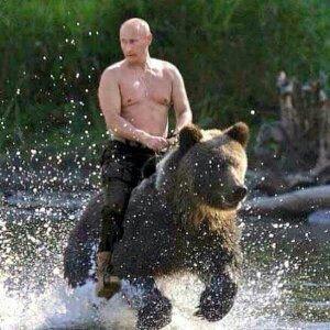 Pitin rides a bear